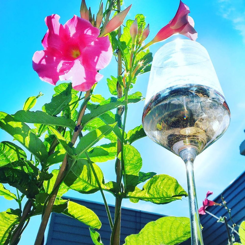 Lush Flower and Wine Glass.jpg