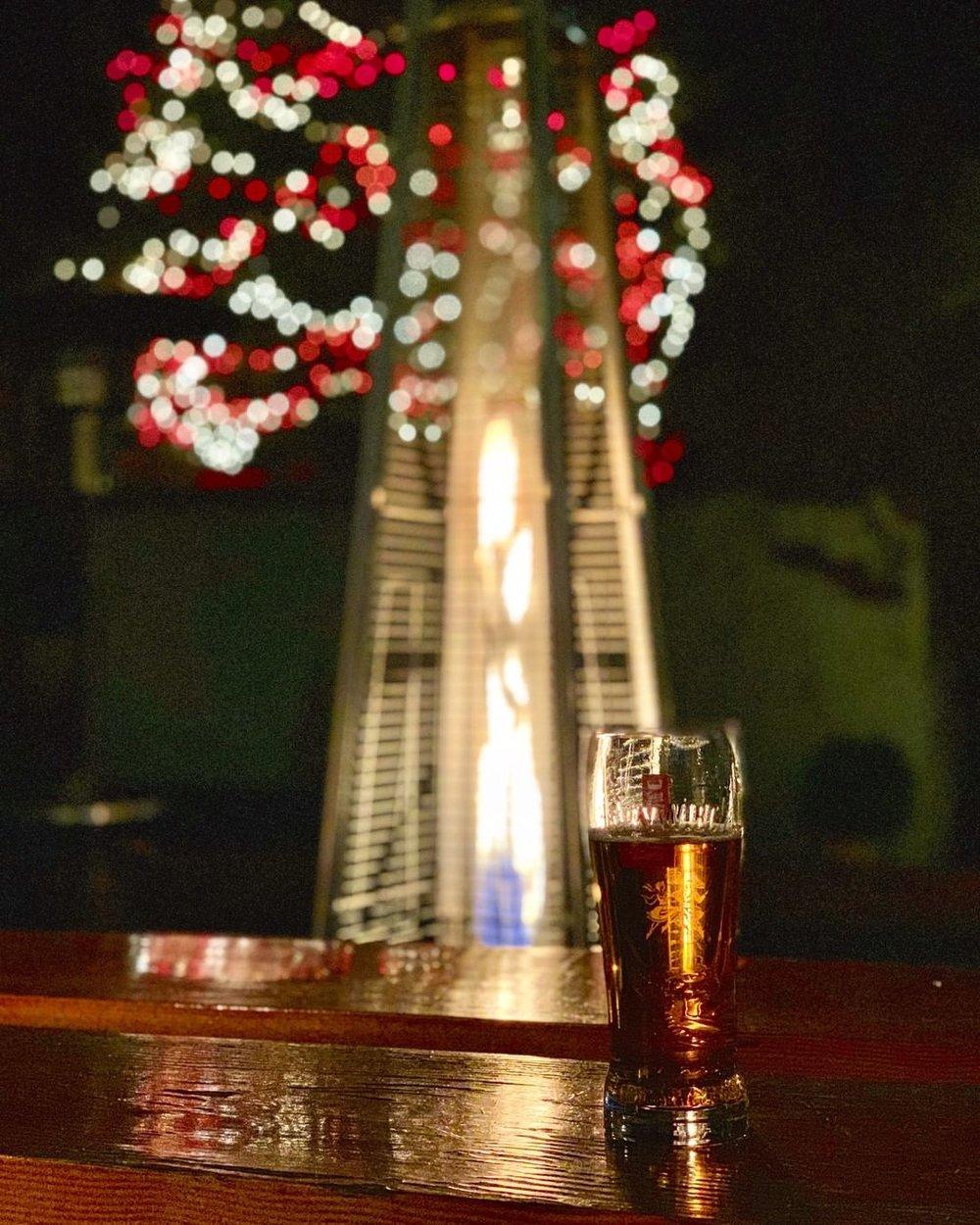 Night - Tree - Zywiec - Holiday.jpg