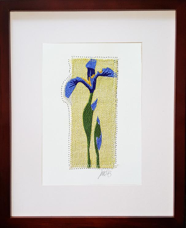 Wild Iris.jpg