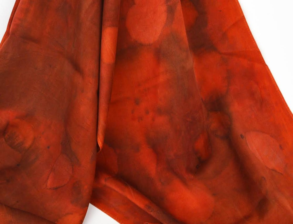 Ayn Hanna - Fort Collins, CO.  Silk scarves made with natural dyes & plant patterns.