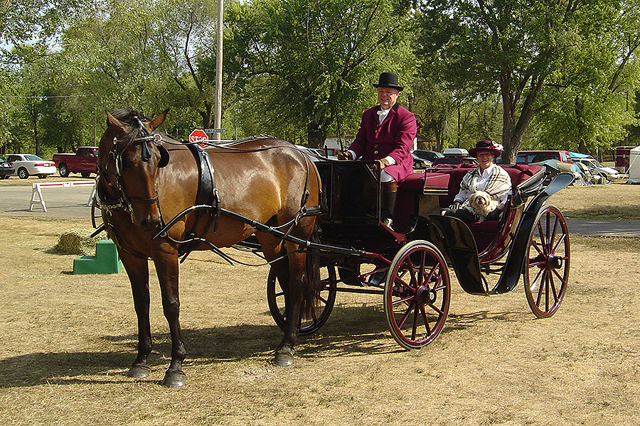Scarlett, with Dan as whip and Susan as passenger, at the 2007 Villa Louis Carriage Classic.