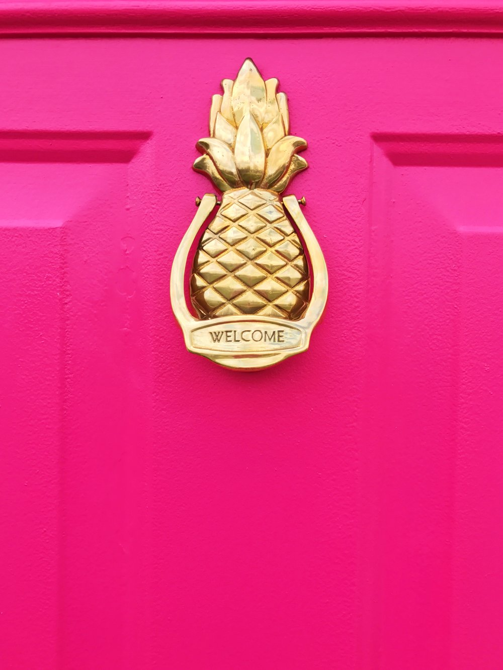 Hot Pink Door with Pineapple Door Knocker. The vintage pineapple door knocker was made my Avon. This door looks amazing after a few coats of Behr Exterior Paint In Pagoda. See the before and after at ericahammer.com