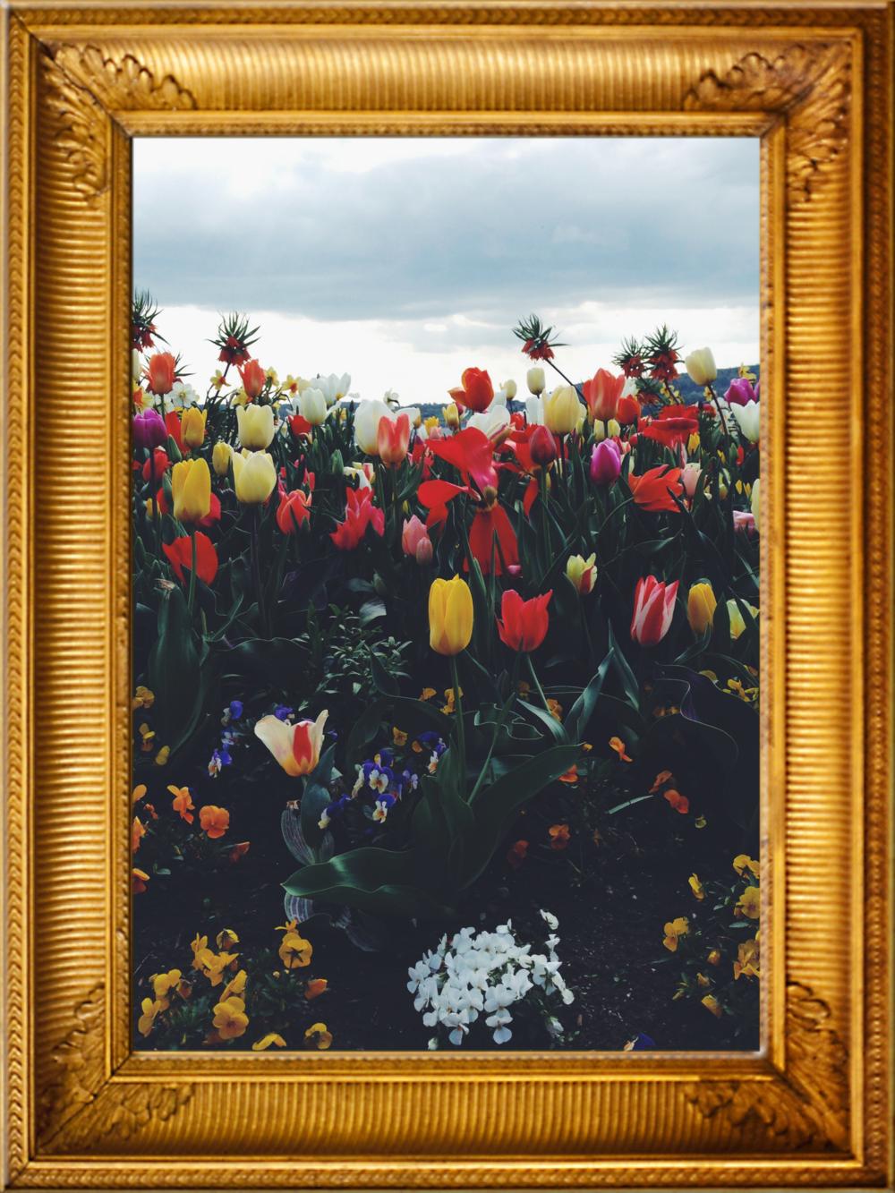 Rahmen Blumen.png