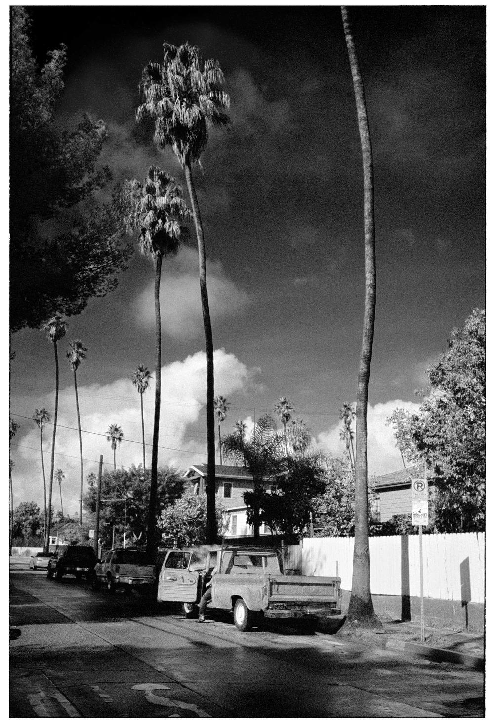22_KB27_12_Palm_Clouds_Venice_Ford_sharp60_whiteFrame_BW.jpg