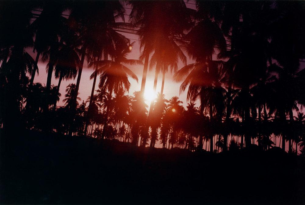 17_Pink_Sunset.jpg