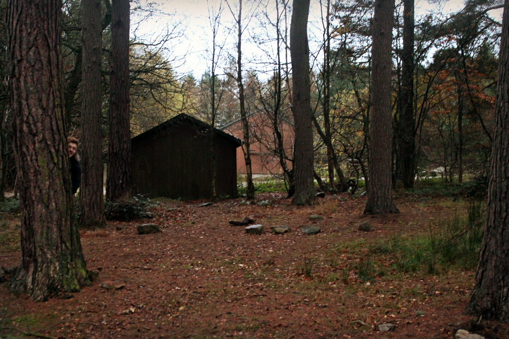 treehouse (58).JPG