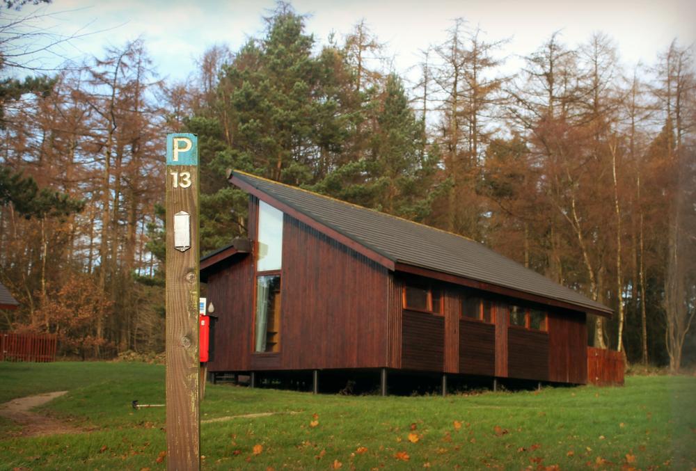 treehouse (60).JPG