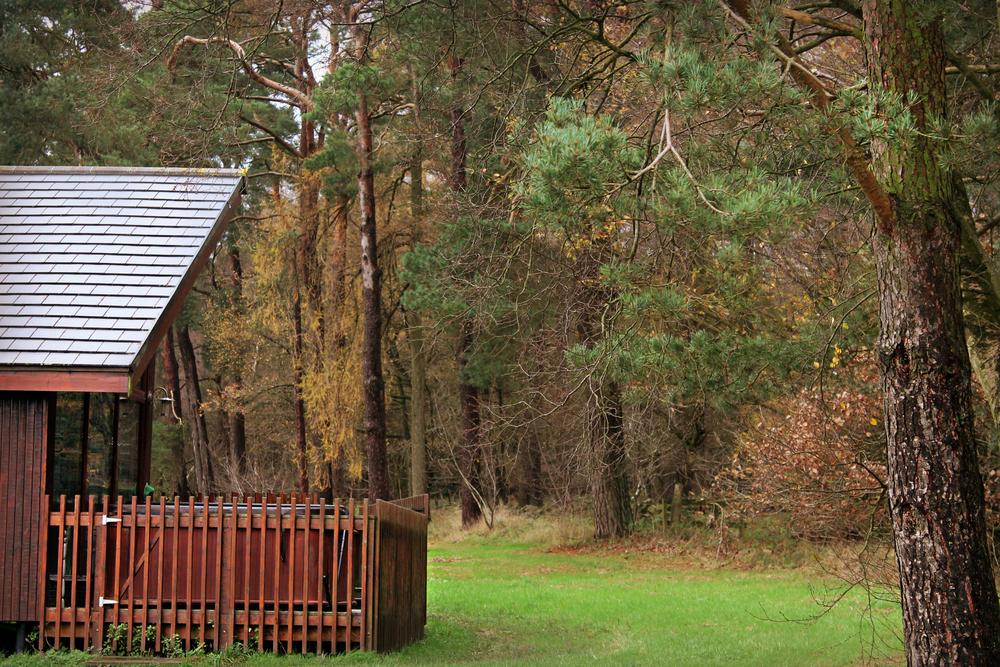 treehouse (59).JPG