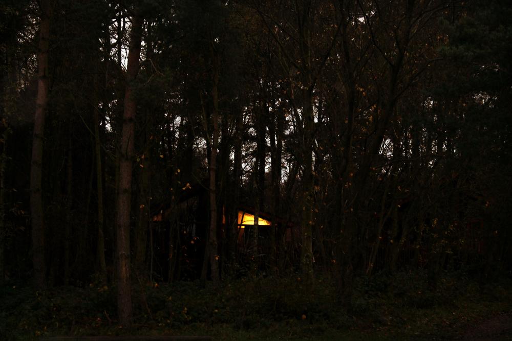treehouse (62).jpg