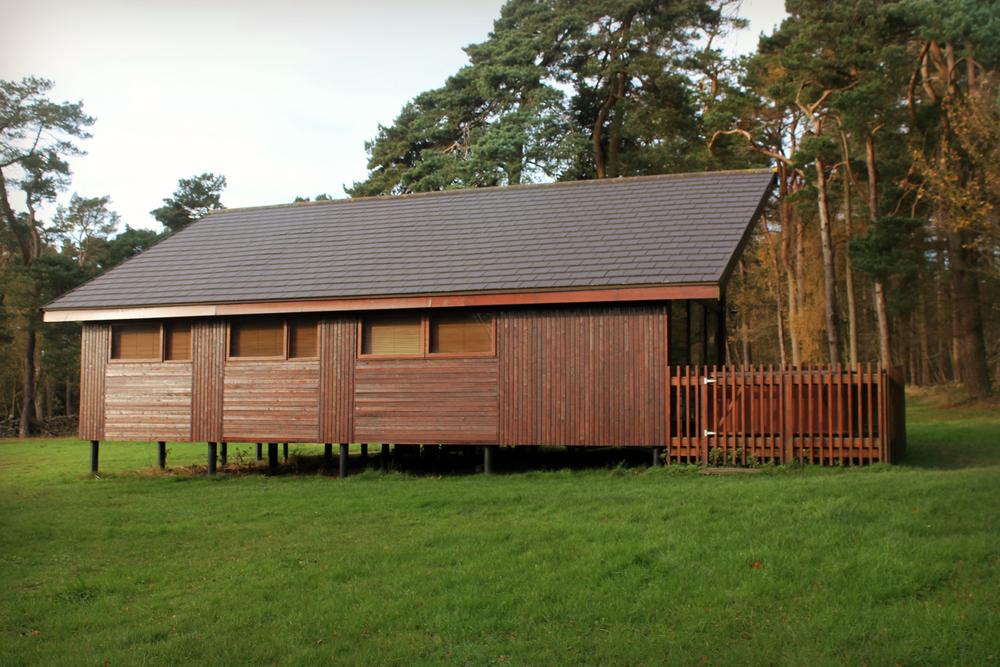 treehouse (67).JPG