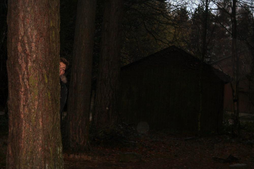 treehouse (11).JPG