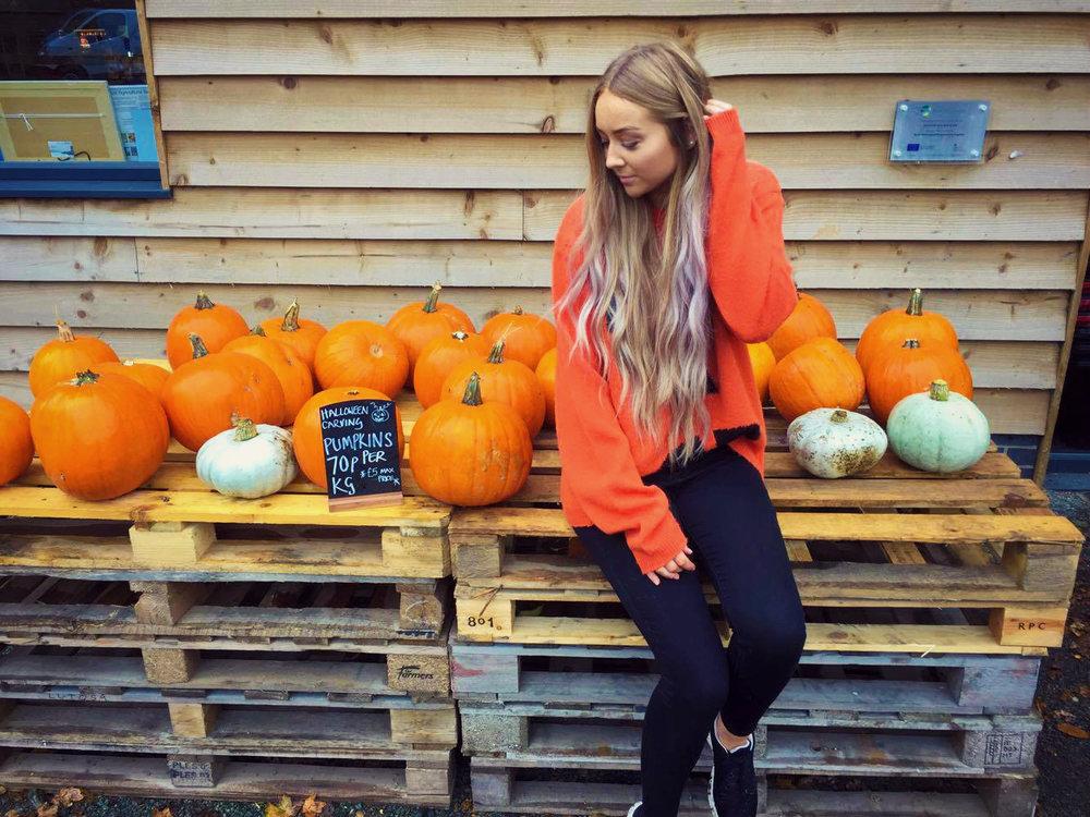 Pumpkin Patch6.jpg
