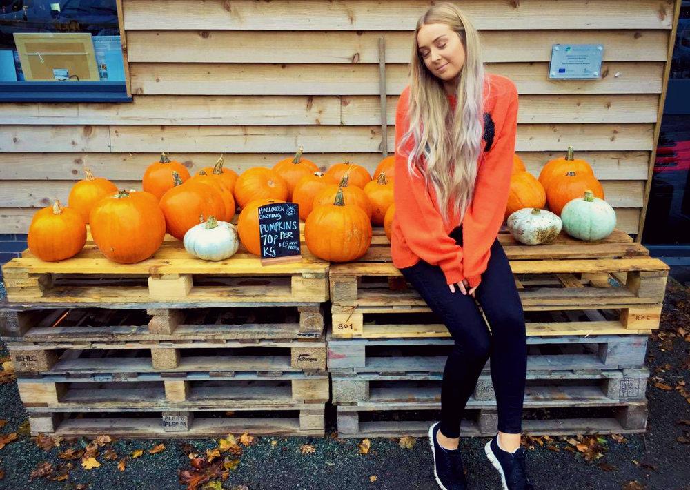 Pumpkin Patch1.jpg
