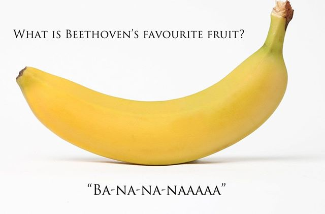 Here's a funny joke to brighten your Friday. #RyanAceMusic