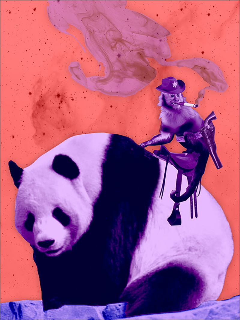 cowboy monkey panda rider.jpg
