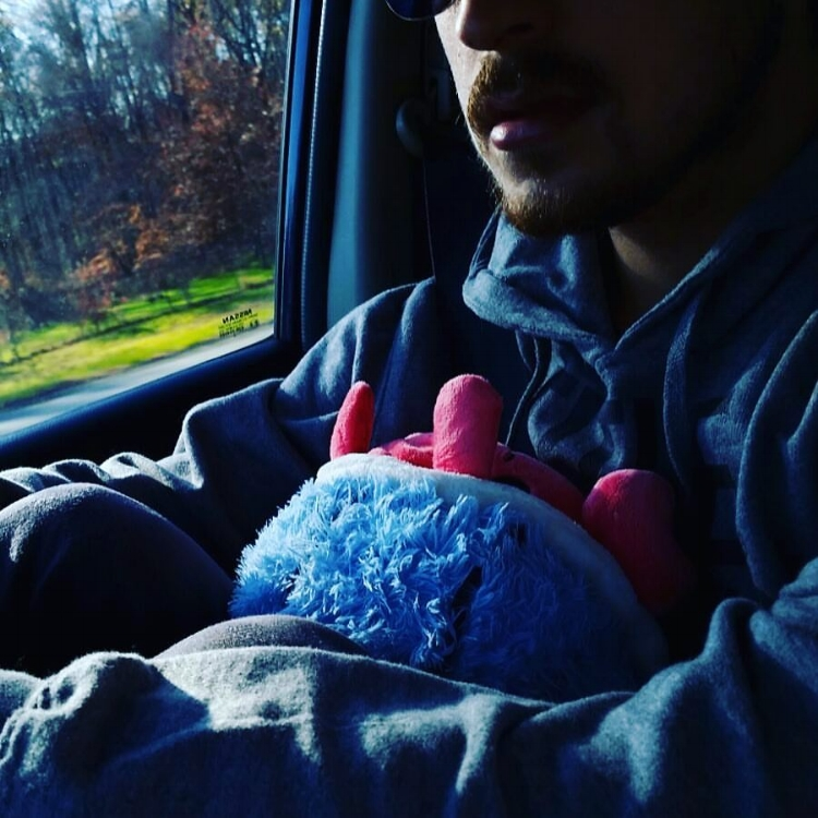 Photo Description: A hermit crab stuffed animal is held in the arms of a man wearing a bleak expression in a car. Outside the window there's greenery and trees. Light shines into the car, illuminating the side of his face and showing reddish facial hair.