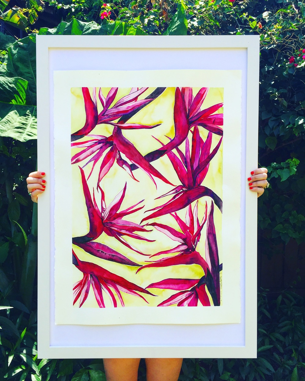 "Just casually holding one of my favorite watercolor ""Birds of Paradise"" pieces in my backyard, it's not heavy or anything. On view now at  Station House  St. Pete."