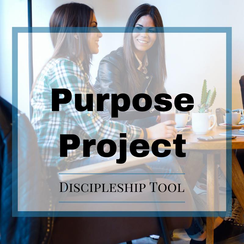 Purpose Project Discipleship Tool.png