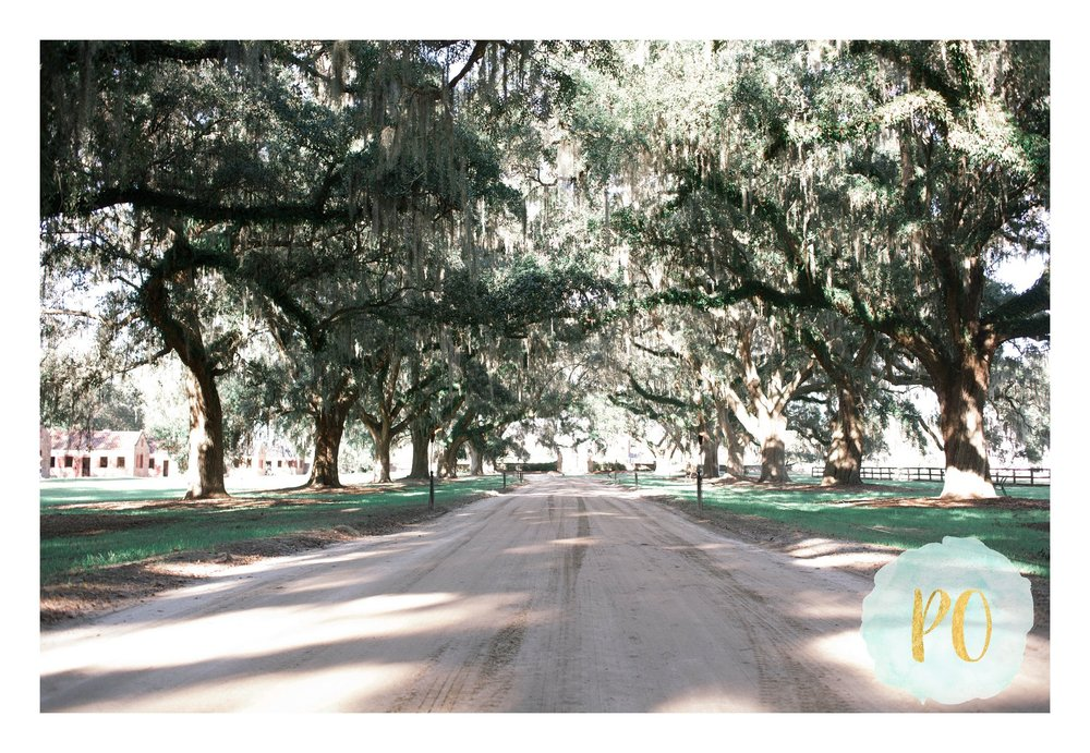 boone_hall_plantation