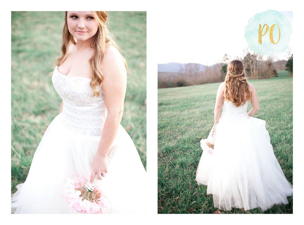 outdoor-landrum-greenville-sc-bridal-wedding-photos_0007.jpg