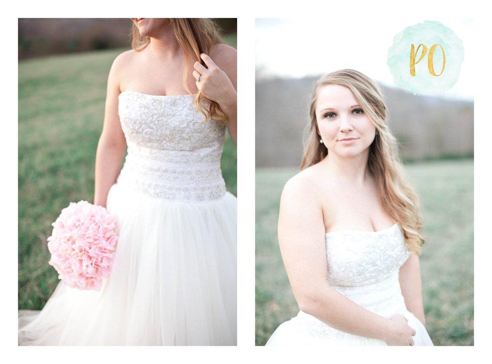 outdoor-landrum-greenville-sc-bridal-wedding-photos_0013.jpg