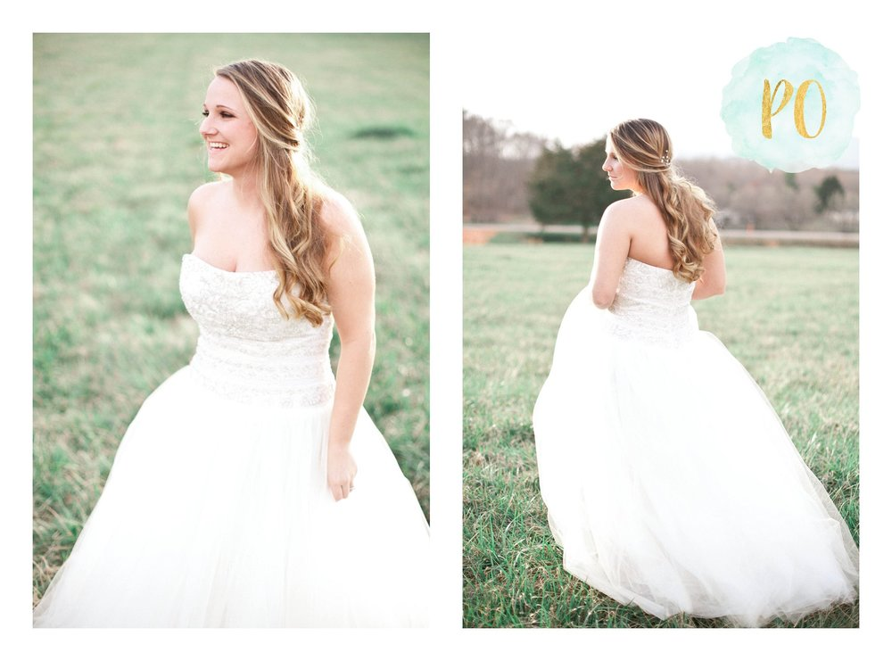 outdoor-landrum-greenville-sc-bridal-wedding-photos_0021.jpg