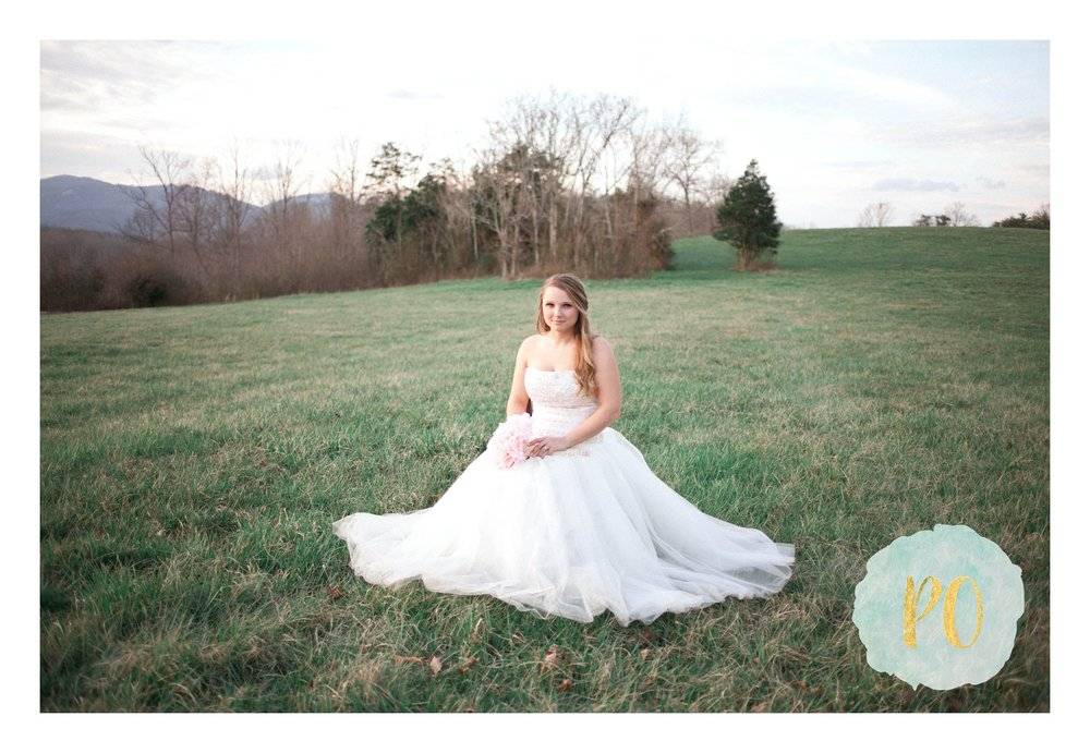 outdoor-landrum-greenville-sc-bridal-wedding-photos_0024.jpg