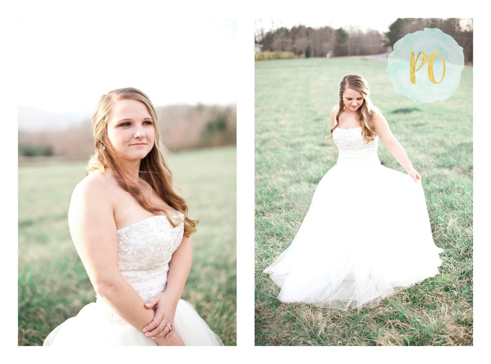 outdoor-landrum-greenville-sc-bridal-wedding-photos_0028.jpg
