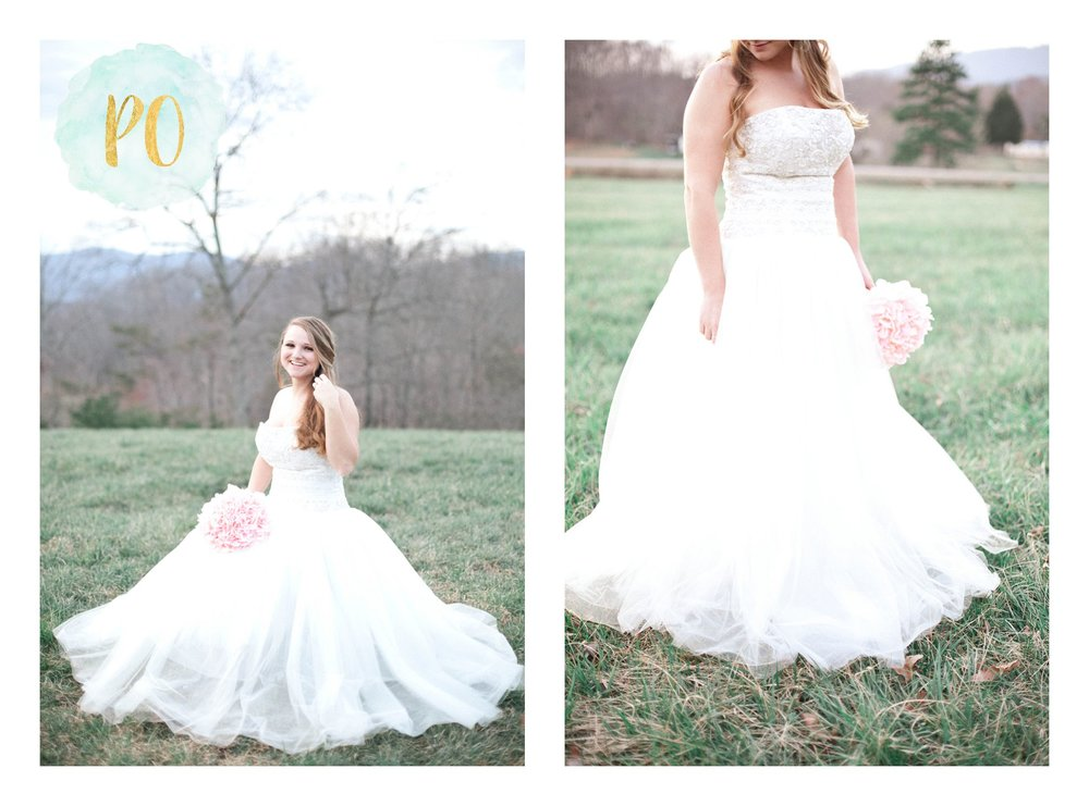 outdoor-landrum-greenville-sc-bridal-wedding-photos_0029.jpg