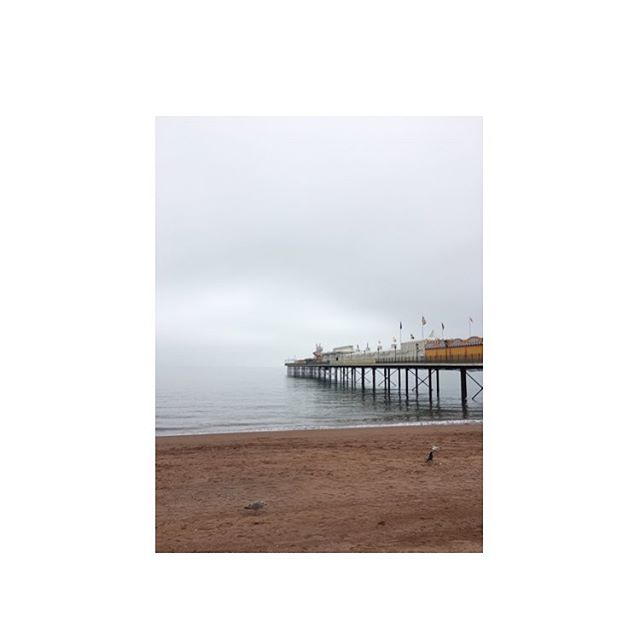 No time for selfies today, when there are marauding seaside vistas to be captured. Paignton pier, pre fish 'n chips and the inevitable toddler melt down 😝🐳🦐🦑🦀 #paignton #pier #pierdom #seasidelife #fishnchips #holiday