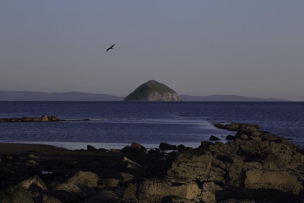 Pladda island from torrylinn beach.jpg