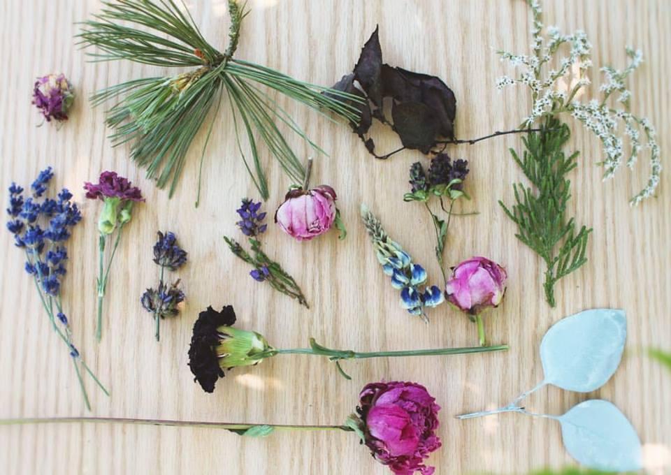 westerwisp flower palette