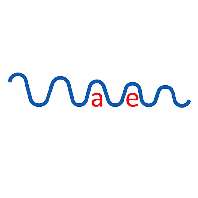 Waven Technology: Improving the capture and conversation of wave energy into electricity.