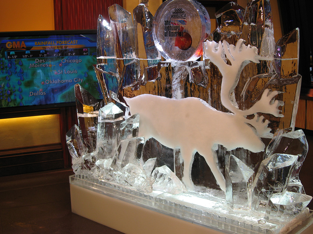 GMA-reindeer.jpg