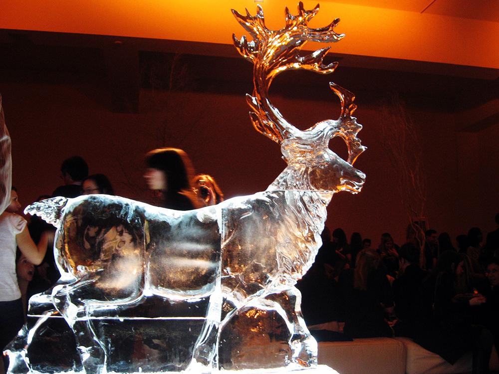 reindeer-martha.jpg