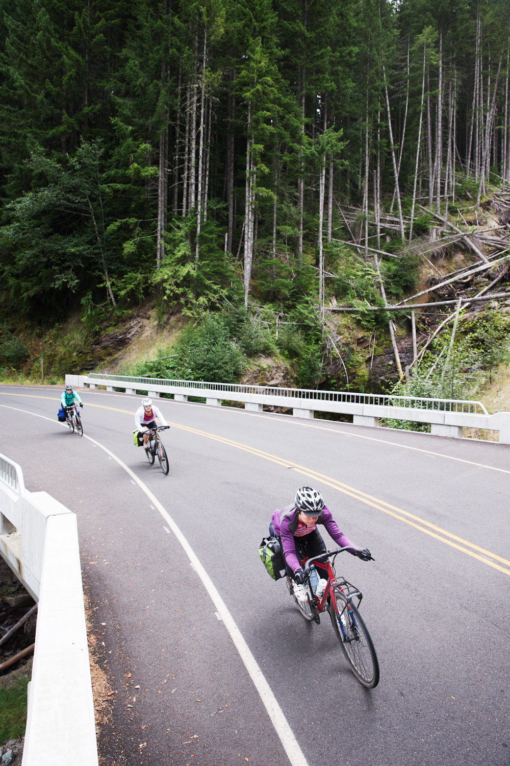 Three road cyclists. Mount St. Helens, WA