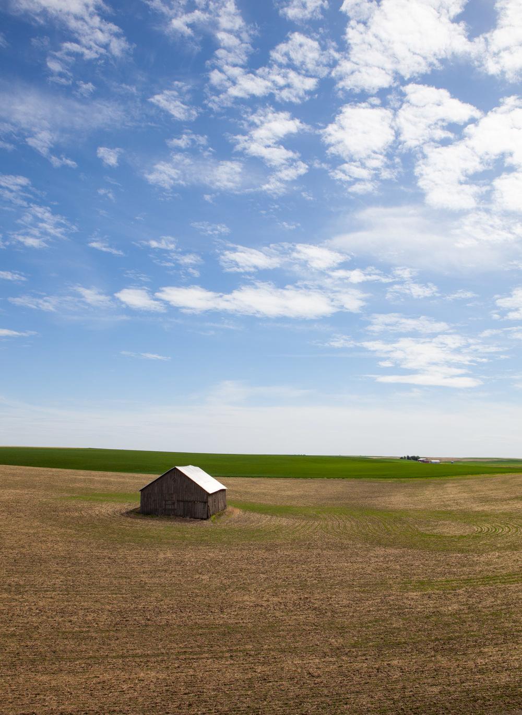bondi_landscape_07.jpg