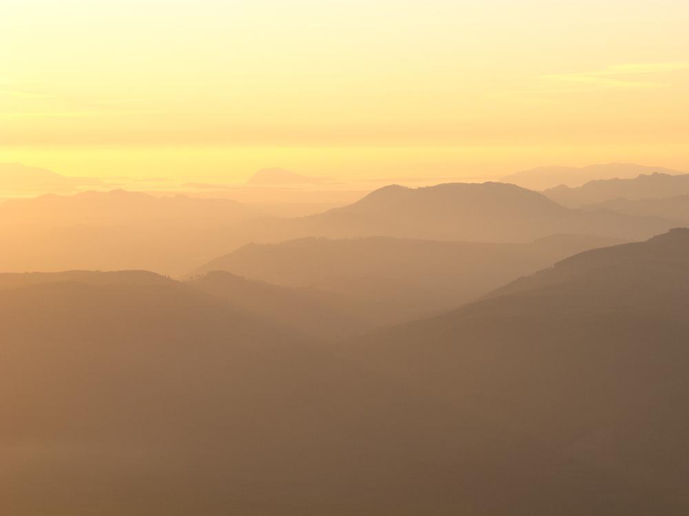 bondi_landscape_11.jpg