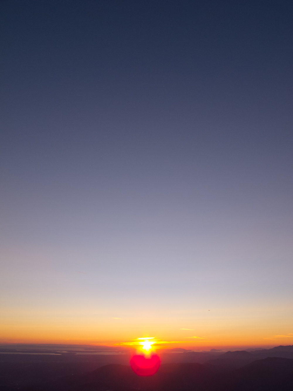 bondi_landscape_12.jpg