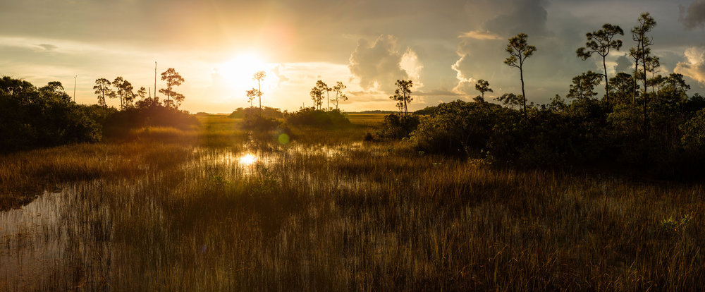 Sunrise over Everglades National Park, Florida