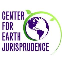 CEJ Logo (2).jpg