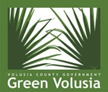 Green Volousia.jpg