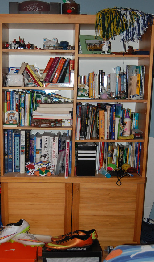 bookshelf+before+copy.jpg