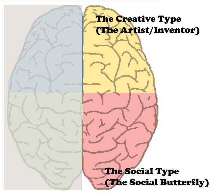 brain right side.jpg