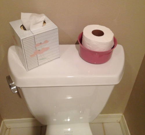 tissues and tp.JPG