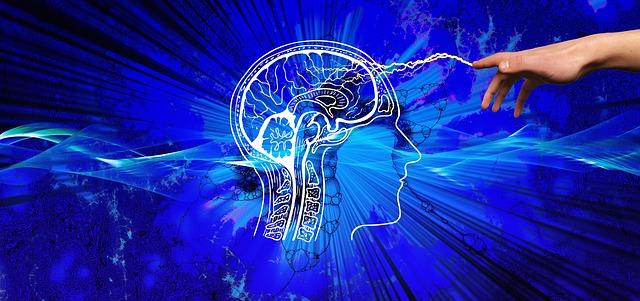 knowledge-3914811_640 brain pixabay.jpg