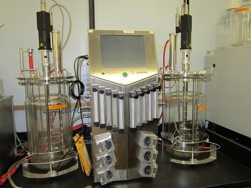 10 L 发酵装置