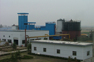 5.5 MW biomass gasification-steam Combined Cycle Power Plant