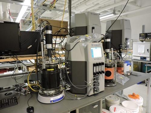 自动消化器通过泵连续进料