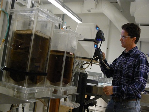 Pilot-scale bioreactor studies are conducted to scale-up